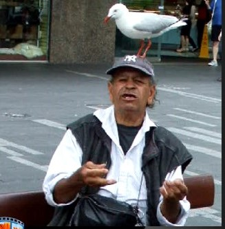 A big thank you goes to the man and seagul who were sitting down for lunch in Sydney Central December 2014.